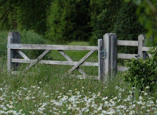 A gate in Coton